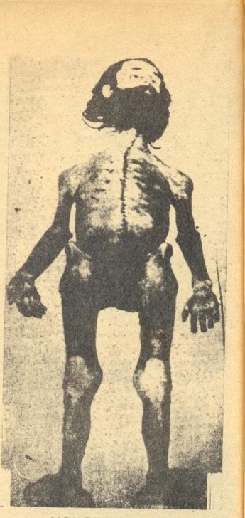 Υπόθεση Μπάαντερ Μάινχοφ, εκδ. Panderma [Λεωνίδας Χρηστάκης], 1976